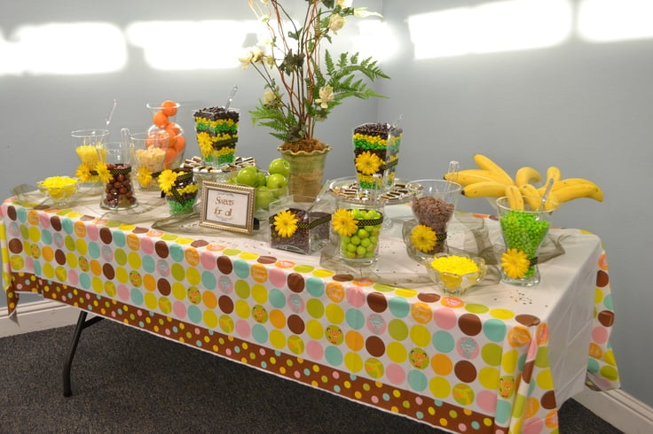 Safari themed baby shower for limited budget baby shower for Baby shower safari decoration